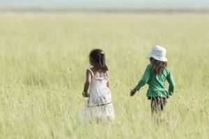 野原に子供2人の後ろ姿