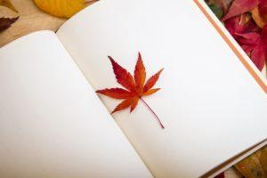 ノートと紅葉