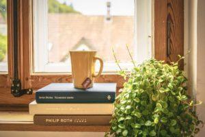 窓と本と植物