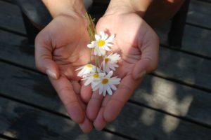 花を両手で包む