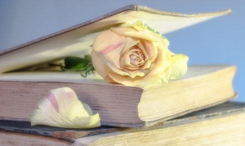 本とバラの花
