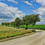 道路の風景