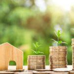 お金と家と植物